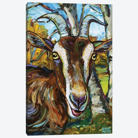 Toggenburg Goat And Trees Canvas Print #RPH183} by Robert Phelps Canvas Print