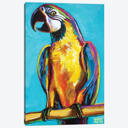 Parrot On Blue Canvas Print #RPH188} by Robert Phelps Canvas Art Print