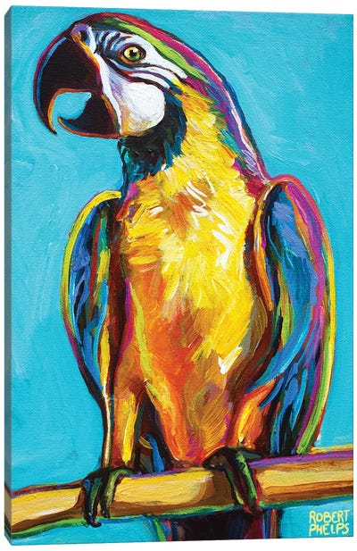 Parrot On Blue Canvas Art Print