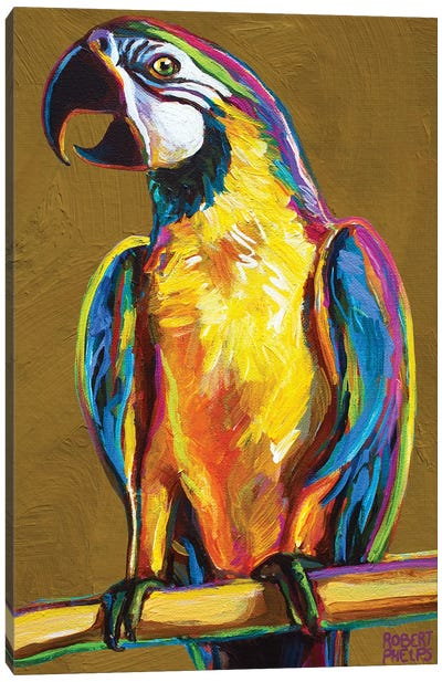 Parrot On Gold Canvas Art Print