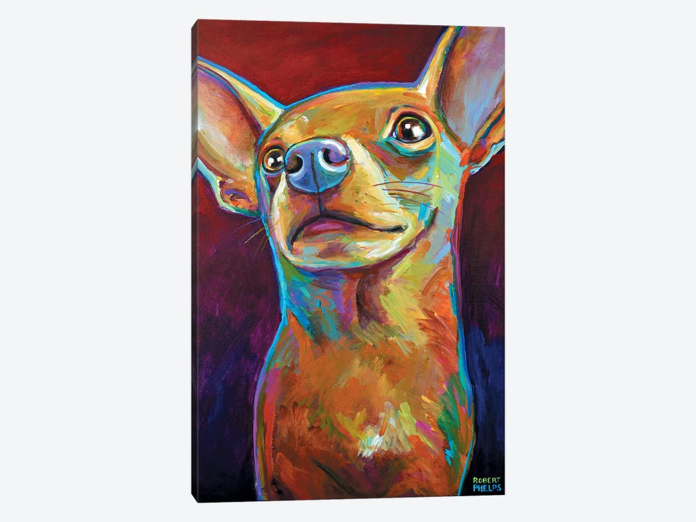 Chihuahua by Robert Phelps 1-piece Canvas Art Print
