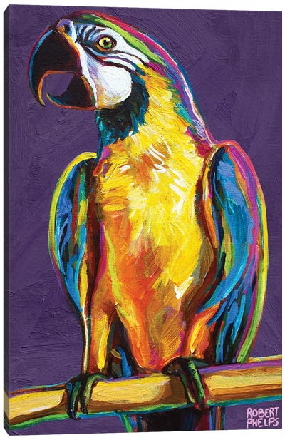 Parrot On Violet Canvas Art Print