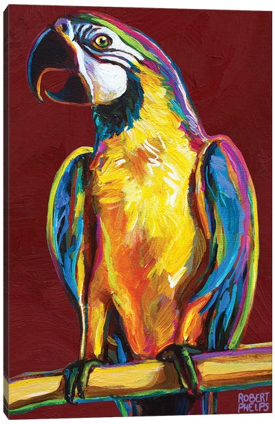 Parrot On Red Canvas Art Print