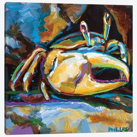 Fiddler Crab Canvas Print #RPH195} by Robert Phelps Art Print