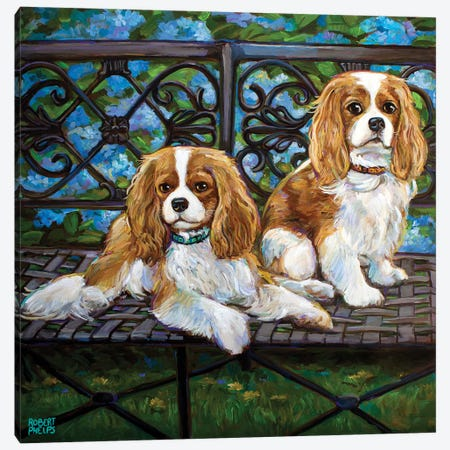 Cavalier King Charles Spaniels In The Garden Canvas Print #RPH196} by Robert Phelps Canvas Art Print