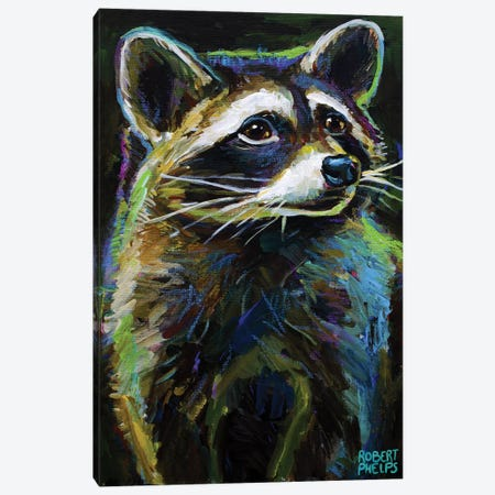 Raccoon Canvas Print #RPH198} by Robert Phelps Canvas Art