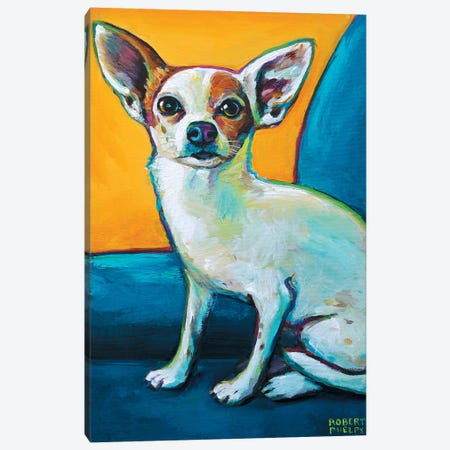 Chihuahua In Chair Canvas Print #RPH19} by Robert Phelps Canvas Art Print