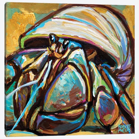 Hermit Crab Canvas Print #RPH201} by Robert Phelps Canvas Art