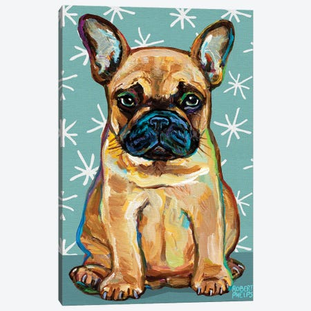 Frenchie Pup and Stars Canvas Print #RPH206} by Robert Phelps Canvas Print