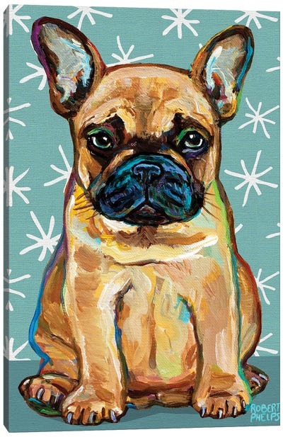 Frenchie Pup and Stars Canvas Art Print