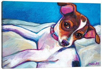 Chihuahua Puppy Canvas Art Print