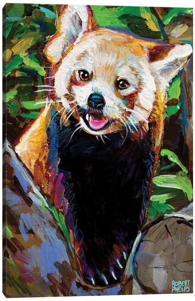Red Panda Canvas Art Print