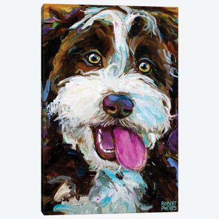 Happy Aussiedoodle I Canvas Print #RPH218} by Robert Phelps Canvas Print