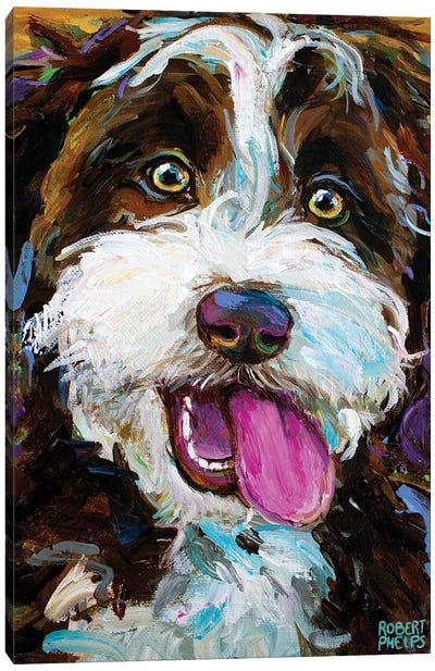 Happy Aussiedoodle I Canvas Art Print