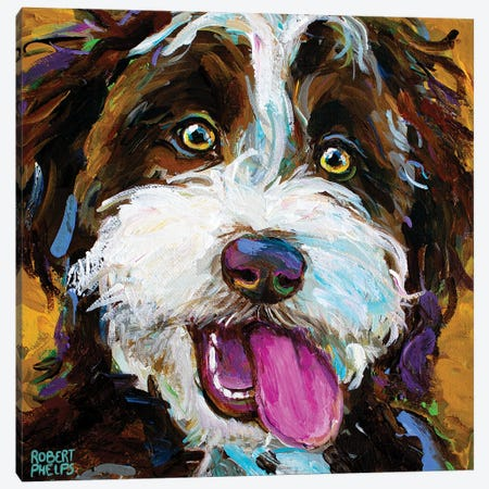 Happy Aussiedoodle II Canvas Print #RPH219} by Robert Phelps Canvas Art Print