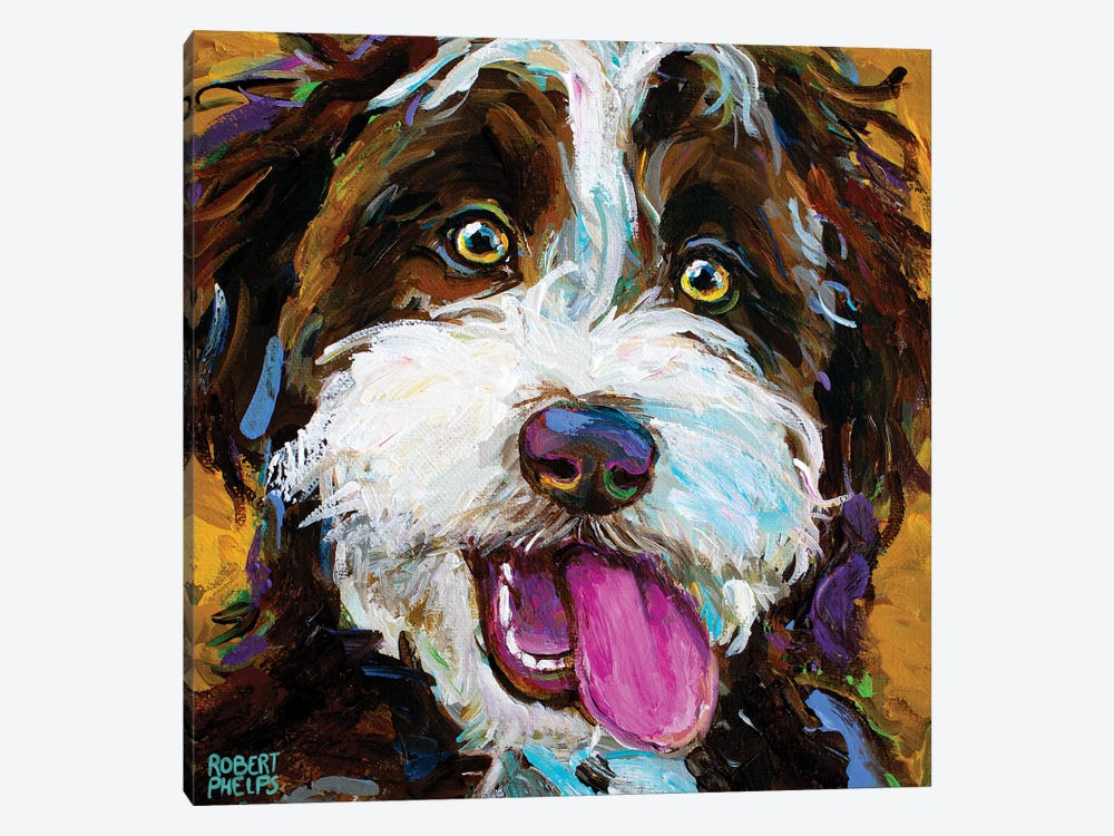 Happy Aussiedoodle II by Robert Phelps 1-piece Canvas Print