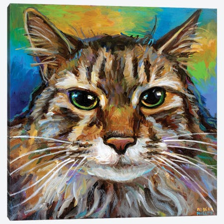 Maine Coon Cat I Canvas Print #RPH224} by Robert Phelps Canvas Print