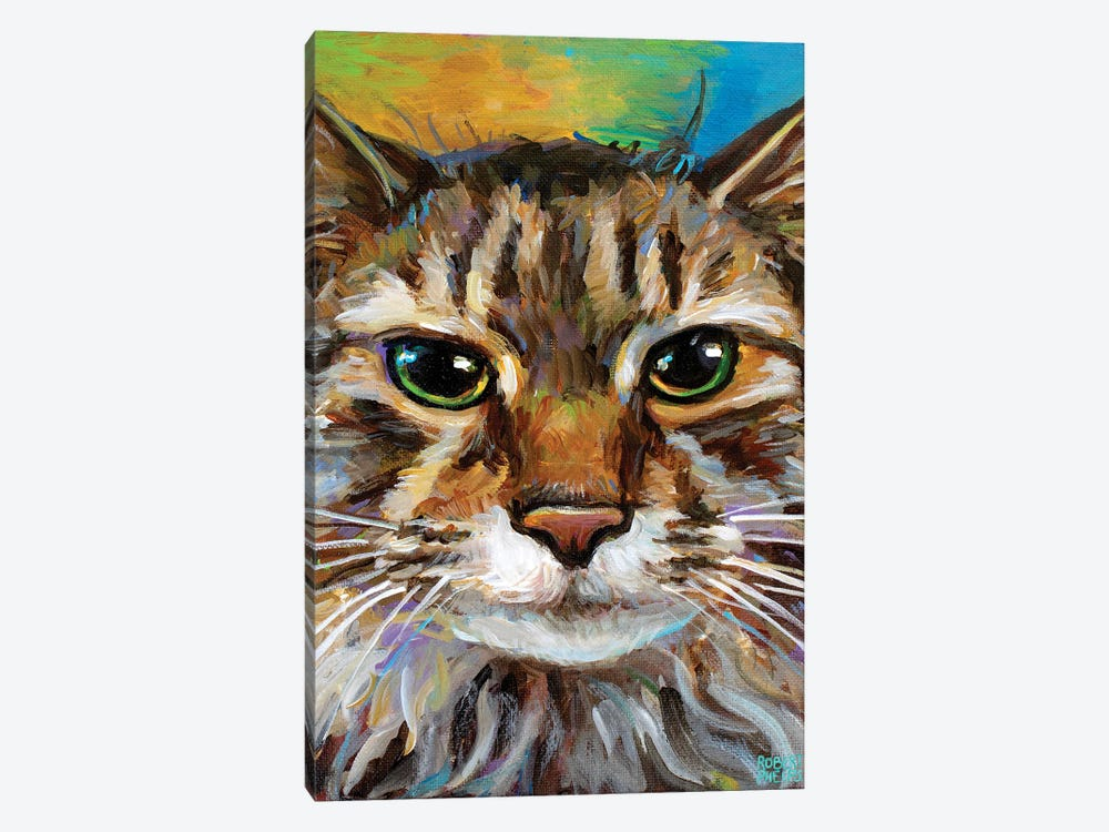 Maine Coon Cat II by Robert Phelps 1-piece Canvas Artwork