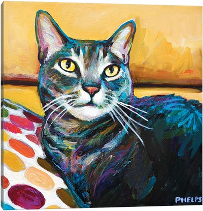 Cy The Cat Canvas Art Print