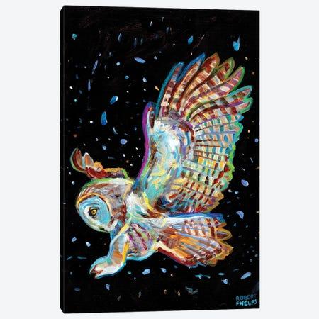 Gray Owl Canvas Print #RPH240} by Robert Phelps Canvas Art