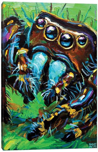 Jumping Spider I Canvas Art Print