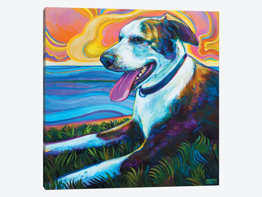 Dog By Seawall by Robert Phelps 1-piece Art Print