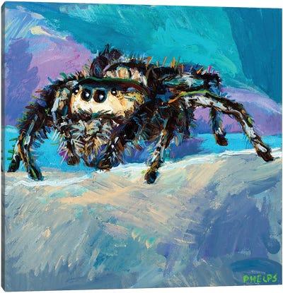 Jumping Spider II Canvas Art Print