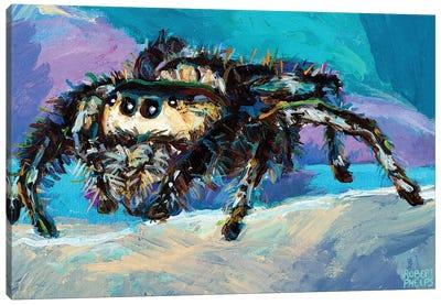 Jumping Spider III Canvas Art Print