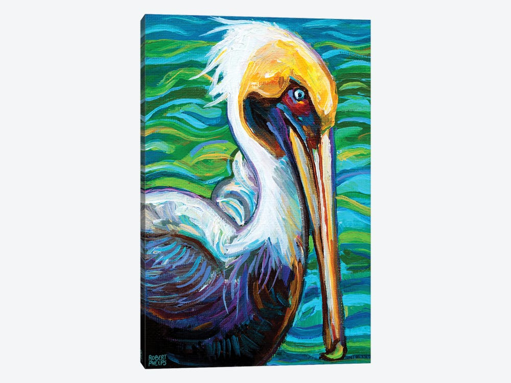 Florida Pelican by Robert Phelps 1-piece Canvas Wall Art