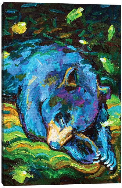 Sleepy Bear Canvas Art Print