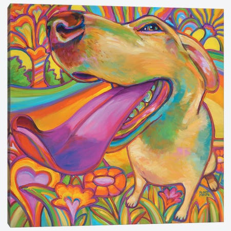 Dog Daze Of Summer Canvas Print #RPH26} by Robert Phelps Art Print