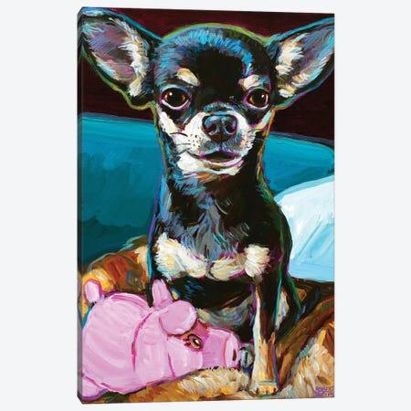 Bibbi The Toy Chihuahua Canvas Print #RPH271} by Robert Phelps Canvas Print