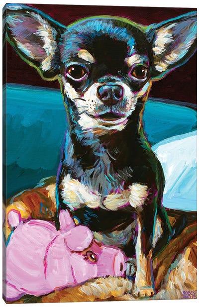 Bibbi The Toy Chihuahua Canvas Art Print