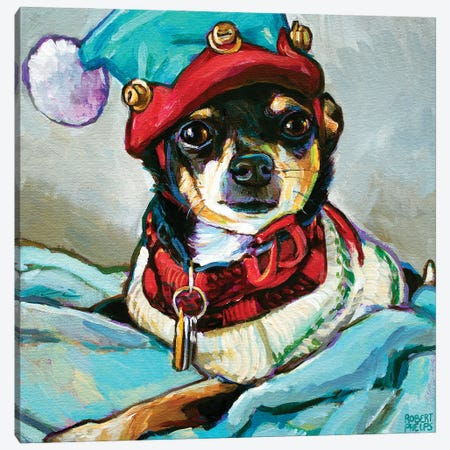 Angel The Chihuahua I Canvas Print #RPH272} by Robert Phelps Canvas Print