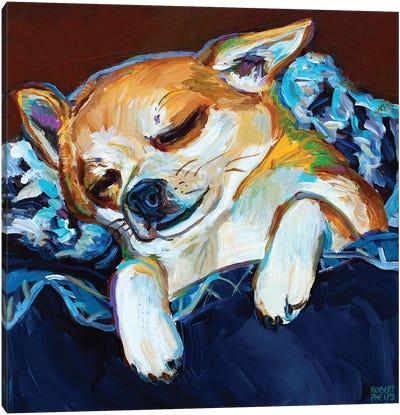 Sleepy Viktor I Canvas Art Print