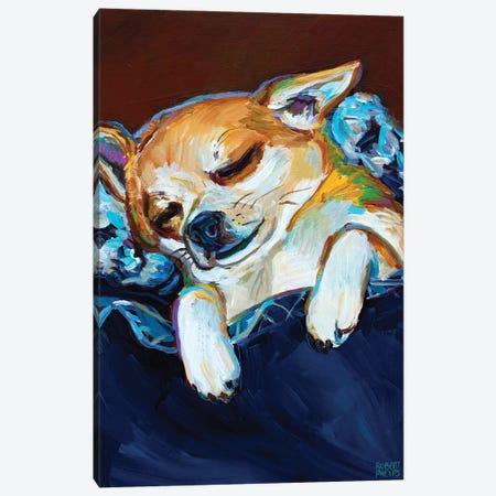 Sleepy Viktor II Canvas Print #RPH277} by Robert Phelps Canvas Wall Art