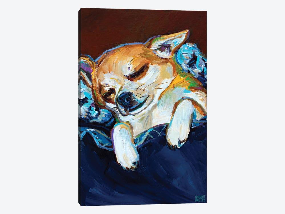 Sleepy Viktor II by Robert Phelps 1-piece Art Print