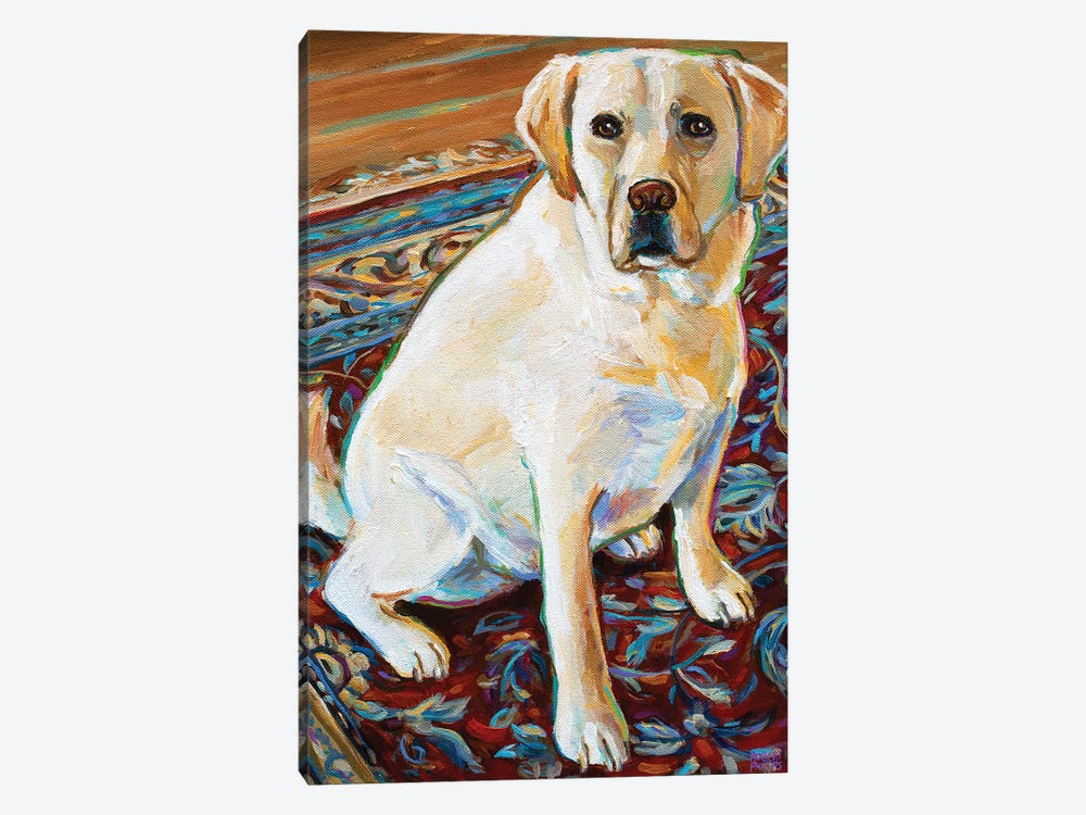 Tenny The Blond Labrador by Robert Phelps 1-piece Canvas Print