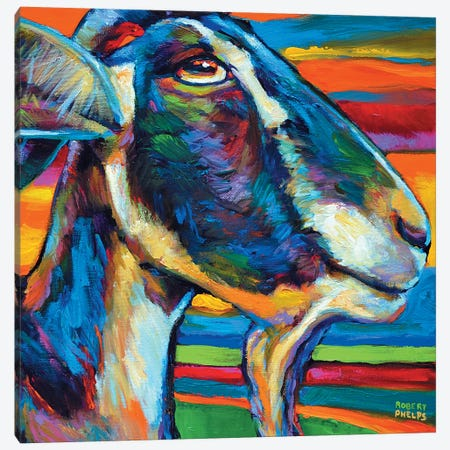 Farm Goat Canvas Print #RPH28} by Robert Phelps Canvas Artwork