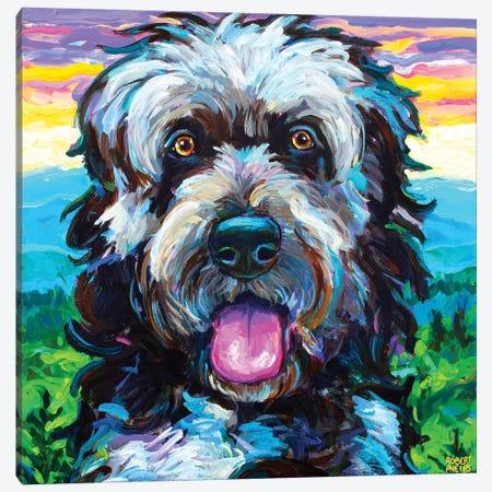 Mountain New Fiepoo I Canvas Print #RPH290} by Robert Phelps Canvas Print