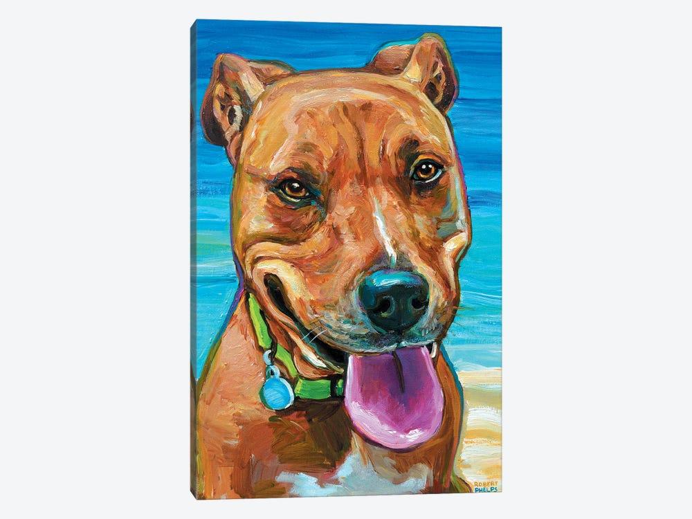 Beach Dog by Robert Phelps 1-piece Canvas Art