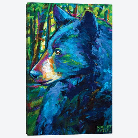Forestbear Canvas Print #RPH30} by Robert Phelps Canvas Print