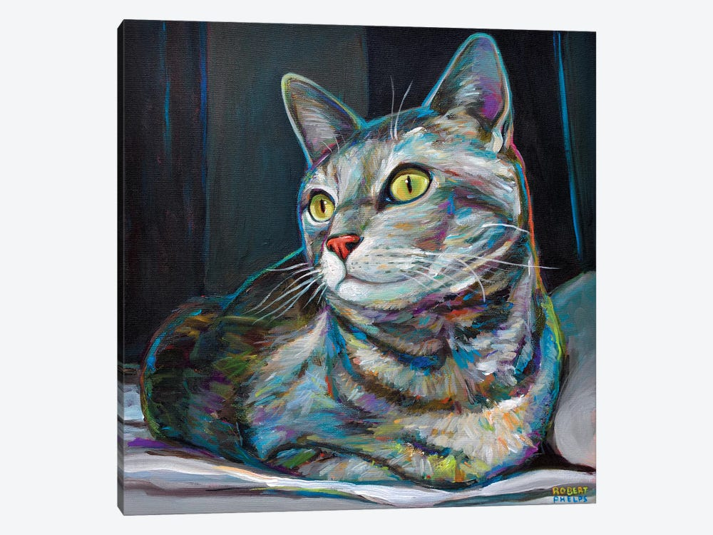 Graycat by Robert Phelps 1-piece Canvas Art Print