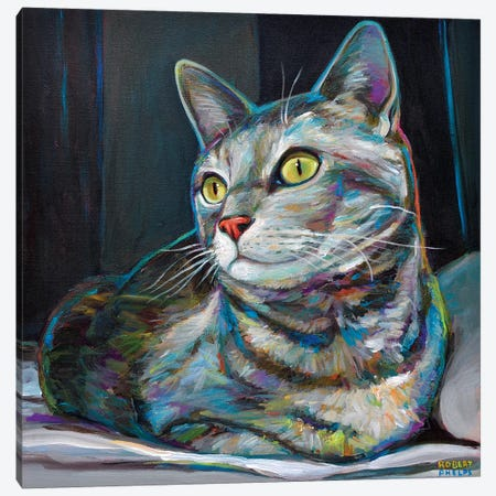Graycat Canvas Print #RPH34} by Robert Phelps Canvas Wall Art