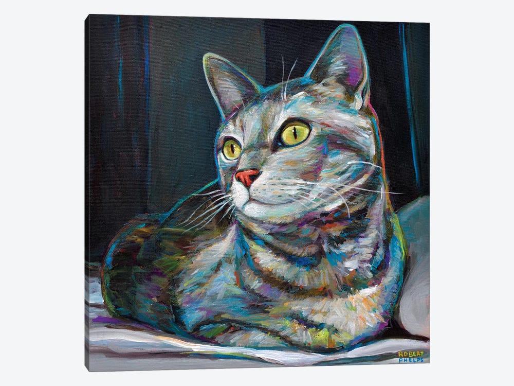 Graycat by Robert Phelps 1-piece Canvas Art Print