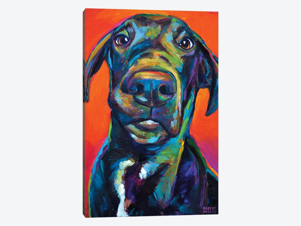 Great Dane I by Robert Phelps 1-piece Canvas Artwork