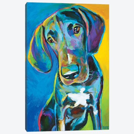 Great Dane II Canvas Print #RPH36} by Robert Phelps Canvas Art