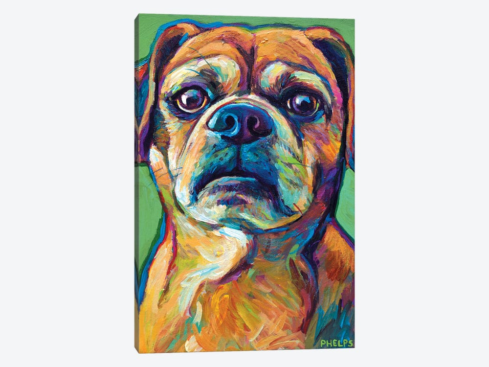 Green Puggle by Robert Phelps 1-piece Canvas Print