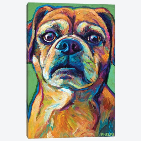 Green Puggle Canvas Print #RPH38} by Robert Phelps Canvas Art Print