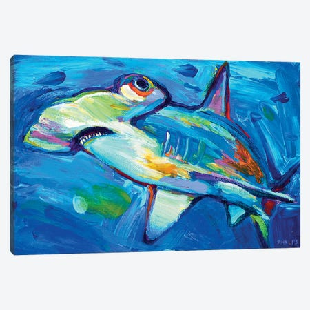 Hammerhead Canvas Print #RPH41} by Robert Phelps Canvas Art